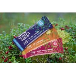 Arctic Superfoods Snack bar 30g Wild Blueberry & Birch Leaf RETAIL PACK (24 pcs)